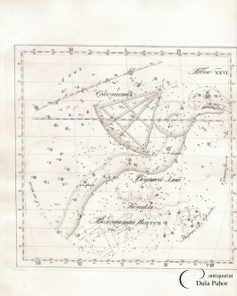 RUSSIAN STAR CHART – Hydra, Felis, Sextans, …: Тав. XXVI / Водяний змій, Кошка, секстан…