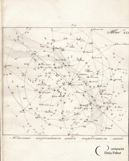 RUSSIAN STAR CHART – Northern Celestial Hemisphere with the Magnitude of the Stars: Тав. XXX.