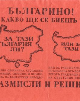 BULGARIA, WWII propaganda flyer: Българино! За какво ще це биешъ ти? За тази България ли? Или за тази? … Размисли и реши! [Bulgarian! What are you going to be fighting for? For this Bulgaria? Or for this? … Think and decide!]