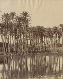 EGYPT: No. 1571. Grand Lac de Badrechen
