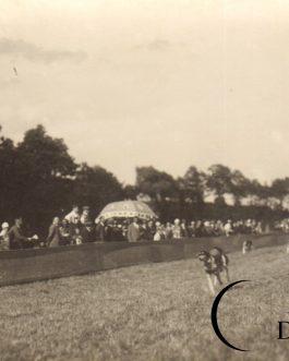 RACE – BORSOI
