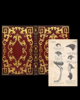 SCIENCE IN THE OTTOMAN WORLD: علم حيوانات و نباتات [The Knowledge of Animals and Plants]